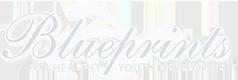 Blueprint for Youth Development